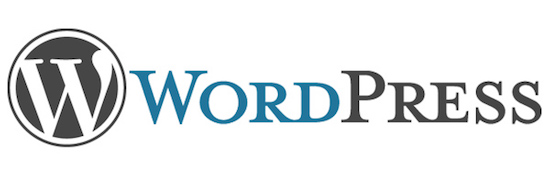 アドセンスで稼ぐなら無料ブログは終わり!WordPress一択!